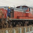 日本国有鉄道 DD51形ディーゼル機関車 *DD51 1805 800番台(重連形 SG非搭載) JR貨物が承継 佐倉機関区
