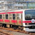 JR東日本 209系 500番台 京葉車両センター31編成⑩ クハ209-5113