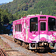 Wp59_nishikigawa_hidamari